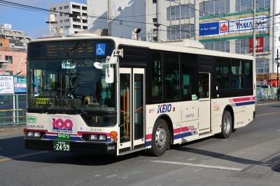 DSC_0113.jpg