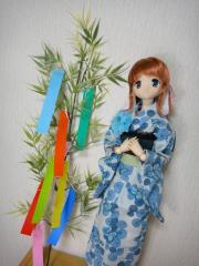 七夕2011-01