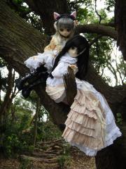 友ヶ島201110-33