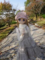 淡路島201111-12