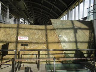 淡路島201111-37