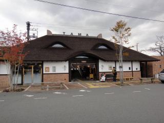 和歌山電鉄201111-04