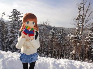 北海道速報2011-01