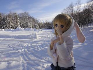 北海道201112-34