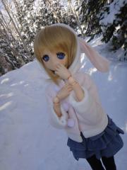 北海道201112-35