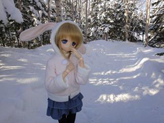 北海道201112-36