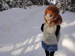 北海道201112-43
