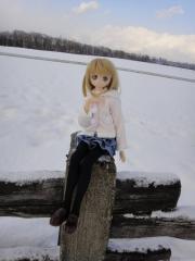 北海道201112-68