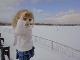 北海道201112-72