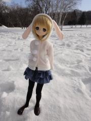 北海道201112-74
