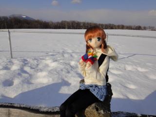 北海道201112-84