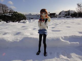 北海道201112-81