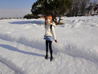 北海道201112-82