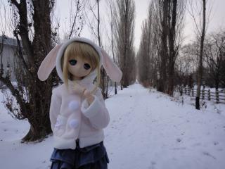 北海道201112-92