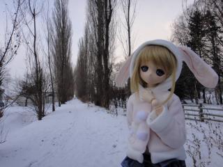北海道201112-93