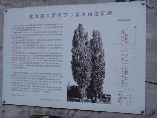 北海道201112-95