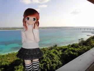 沖縄201201-19