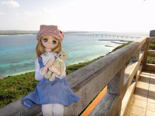 沖縄201201-24