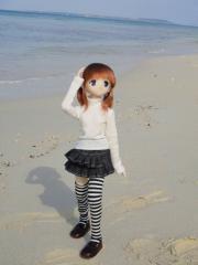 沖縄201201-36