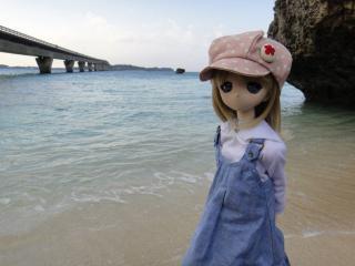 沖縄201201-75
