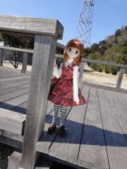 ウサギ島201202-51
