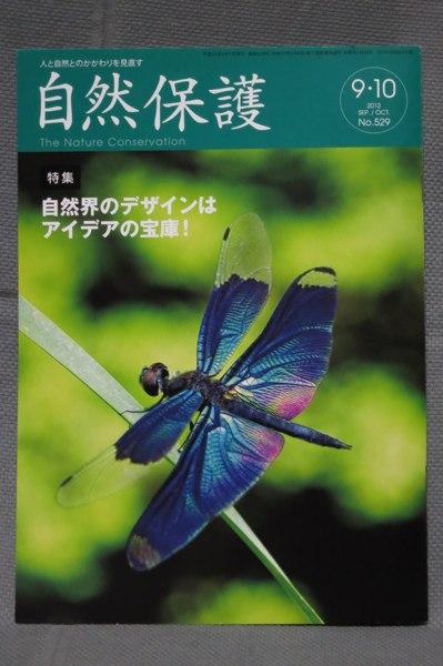 2012083101.jpg