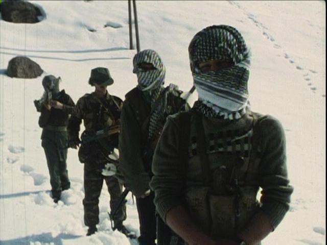パレスチナ76-83