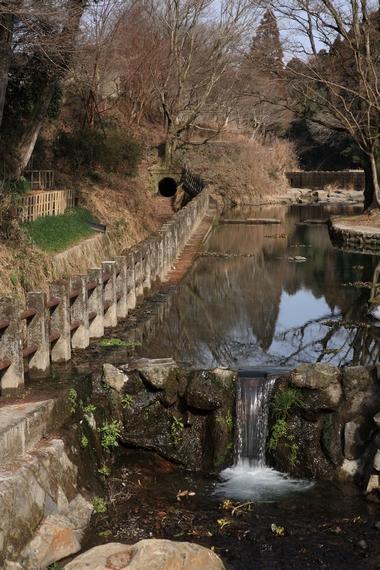 20110123-004.jpg