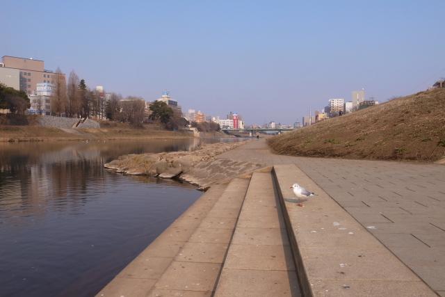20110203-002.jpg
