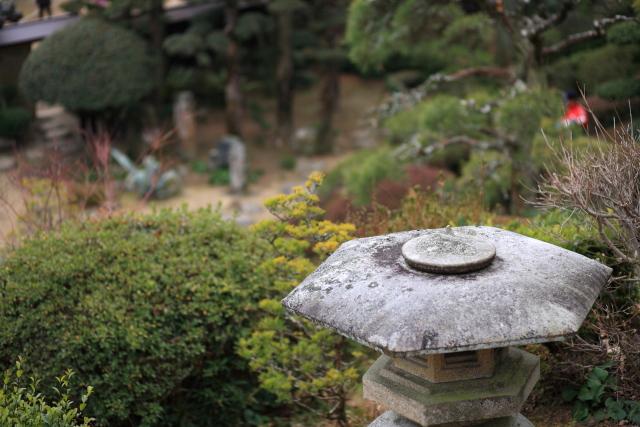 20110220-004.jpg