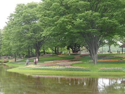 公園内の小川