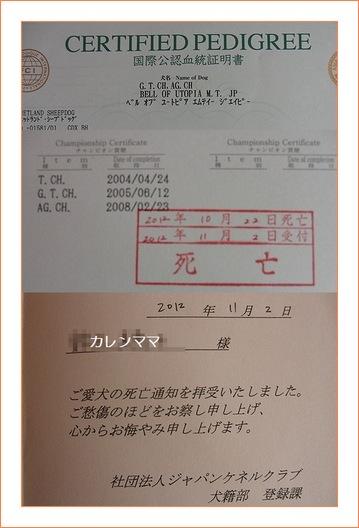 カレンの血統書