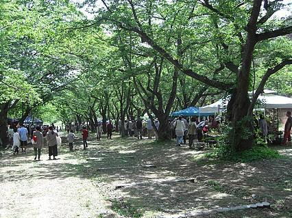 津軽森・つがるもり2013-3