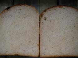 食パン断面1