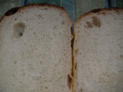 食パン断面2