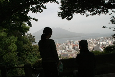 2011 natu 134