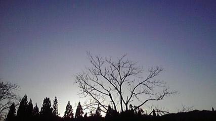2010111916040000.jpg