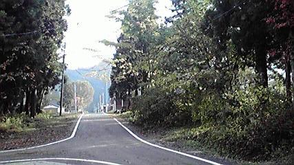 2011110408130001.jpg