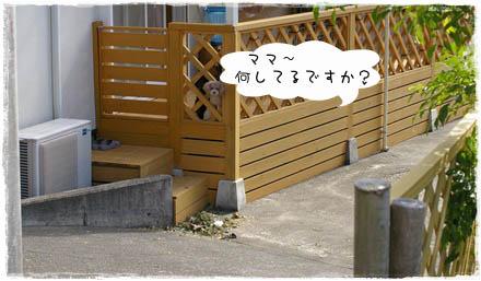 IMGP3060.jpg