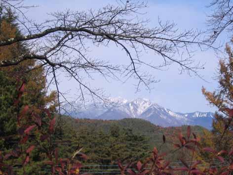 H241115八ヶ岳