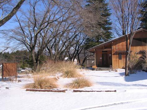 H241229雪景色②