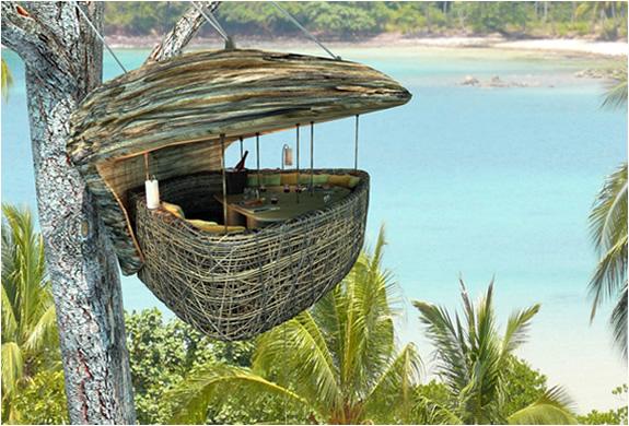 img_tree_dining_pod_thailand.jpg