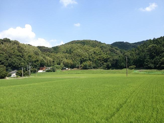 sakiyama15.jpg