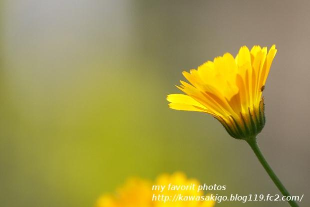 IMG_3016-22.jpg