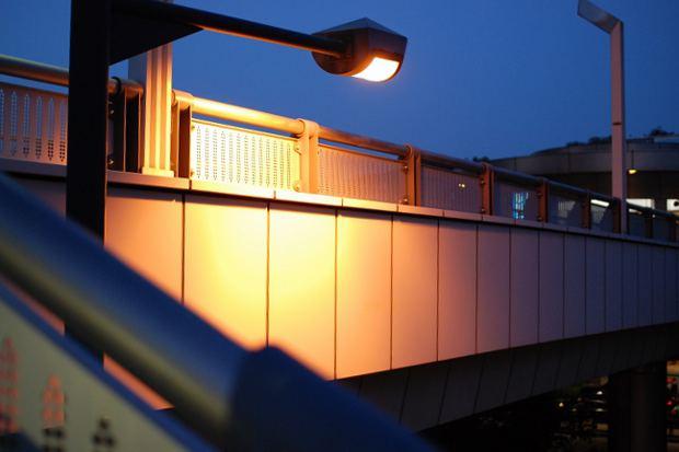 mizonokutiDSC_0266.jpg