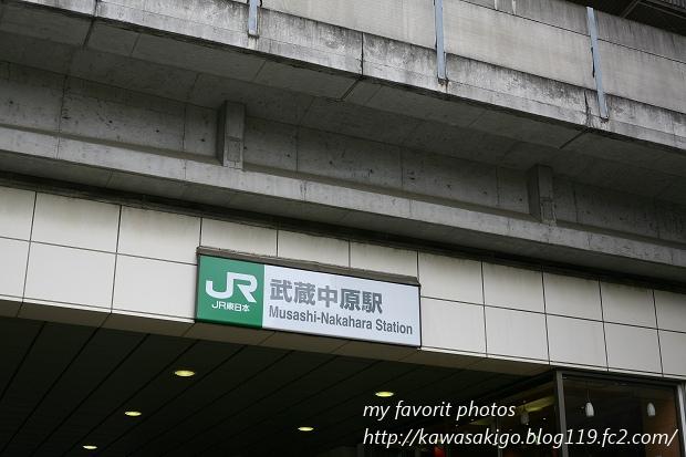 nakaharasanpo1IMG_3786.jpg