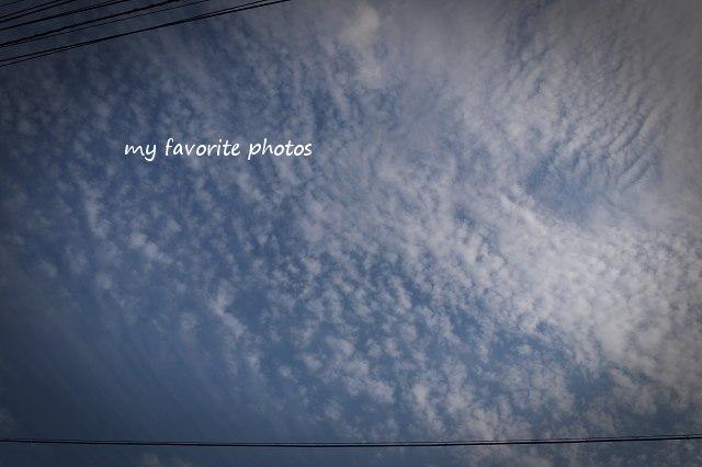 photo_P9270635.jpg