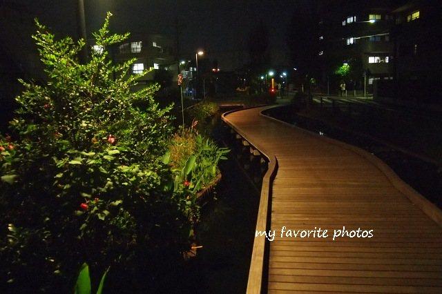photo_P9280727.jpg