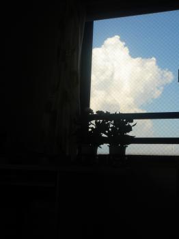 20080805-2.jpg