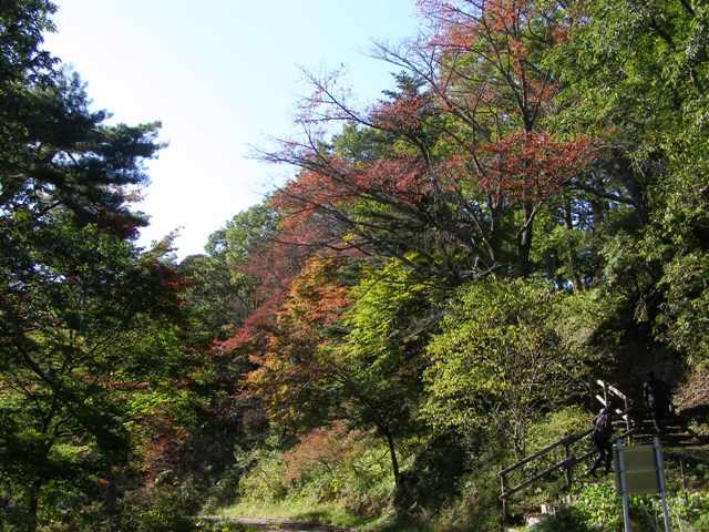 舘山公園1